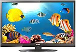 Intex 2410 60 cm (24 inches) HD LED TV
