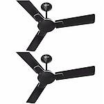 Havells Enticer 1200 mm Ceiling Fan Black / Brown